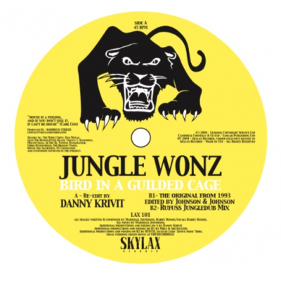 Jungle Wonz - Bird In A Guilded Cage (Danny krivit re-edit & Hardrock Striker edit)