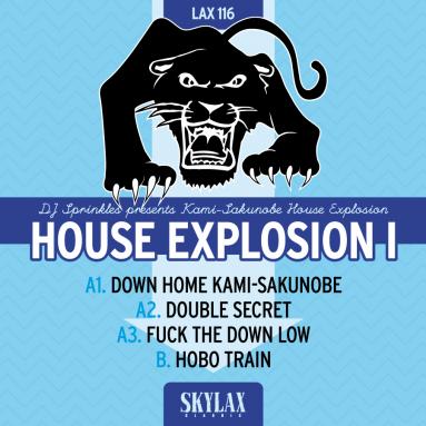 DJ Sprinkles - House Explosion I