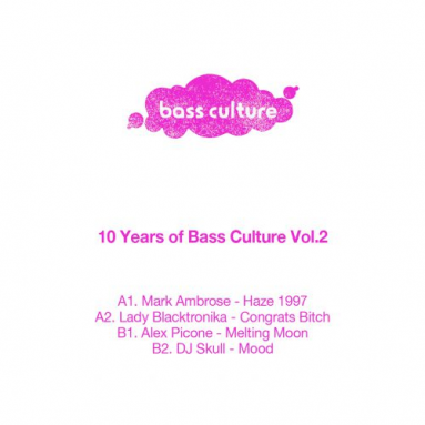 Various - 10 Years of Bass Culture Part 2